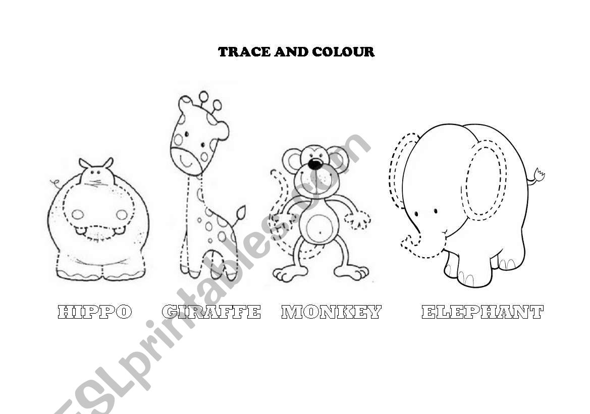 Trace And Colour Animals