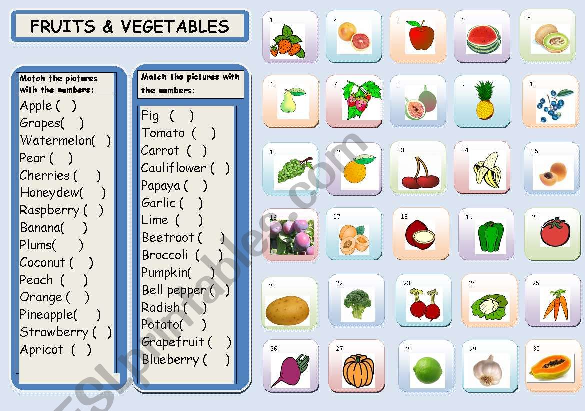 Fruits Amp Vegetables