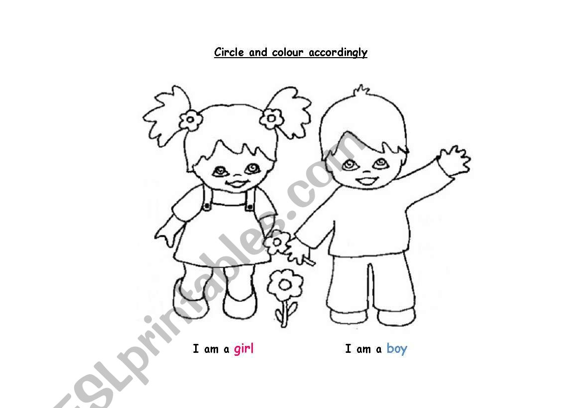 Boy Or Girl Preschool Kindergarten