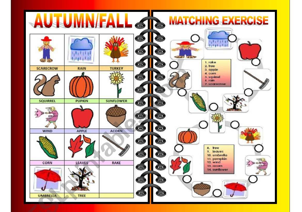 Seasons Pictionary And Matching All In One Fall Autumn 2