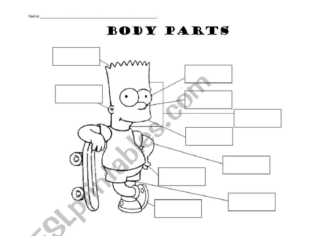 Body Parts The Simpsons