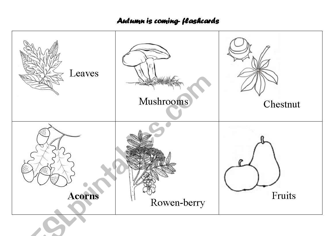 English Worksheets Autumn Is Coming