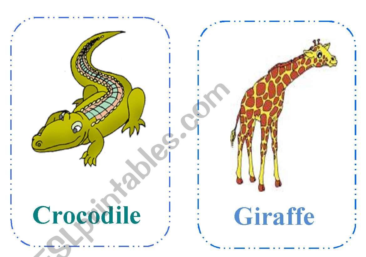 Wild Animals Flashcards