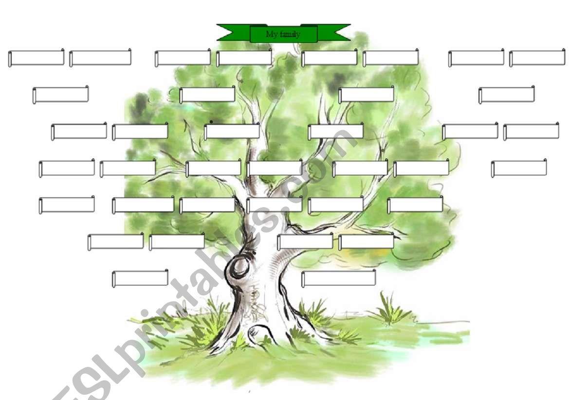 Describe Leaf Worksheet