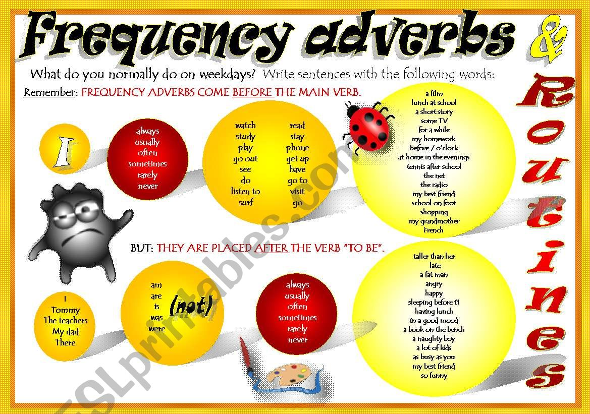 Frequency Adverbs Routines