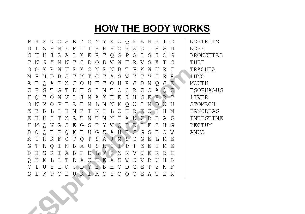 English Worksheets The Body Systems