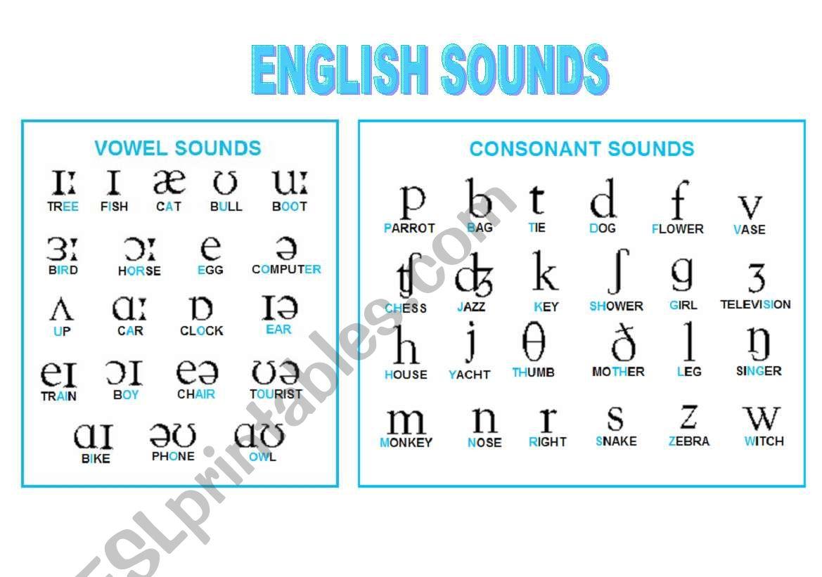 Phonetic Symbols Chart