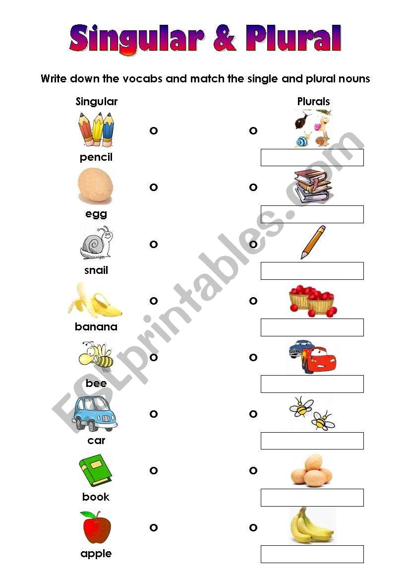 Matching Worksheet For Singular And Plural Very Easy