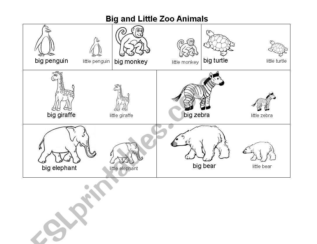 Big And Little Zoo Animals