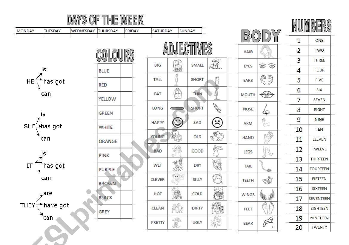 Vocab Page For Speaking Colours Adjective Body Numbers