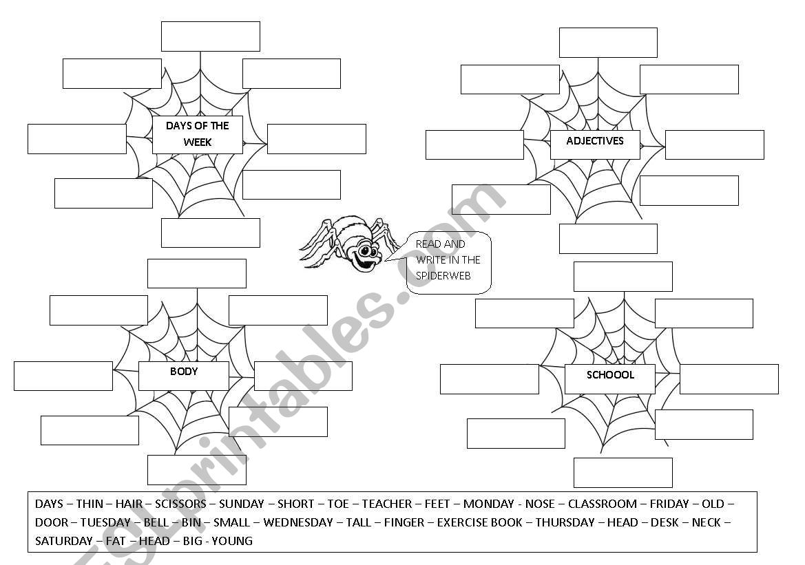 Vocabulary Insert In The Spiderweb