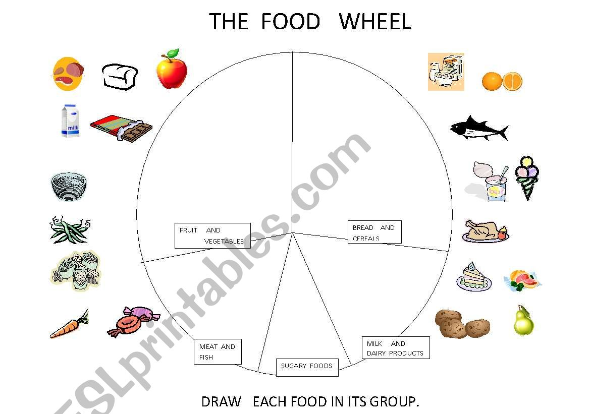 The Food Wheel