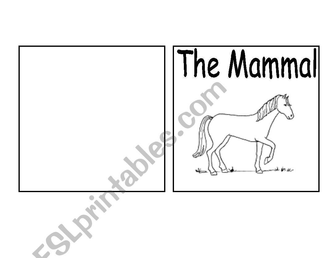 Parts Of A Mammal Book Horse