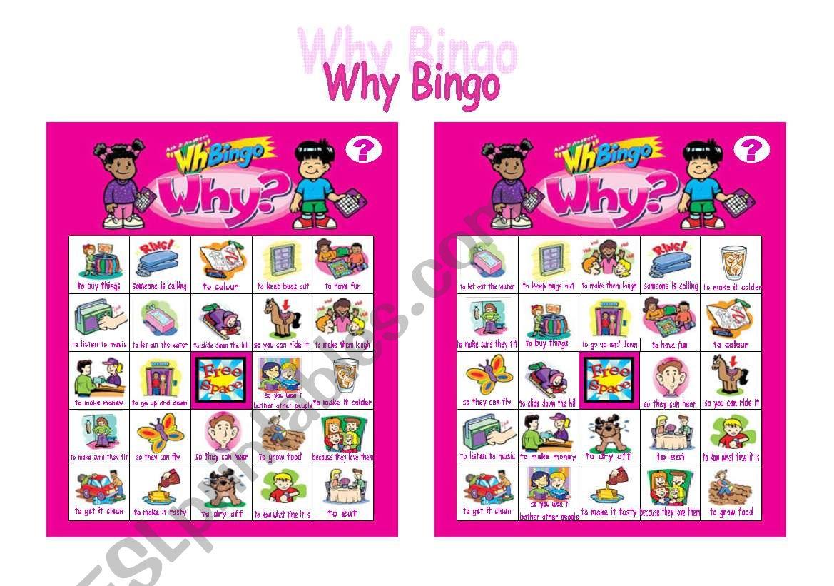 Why Bingo