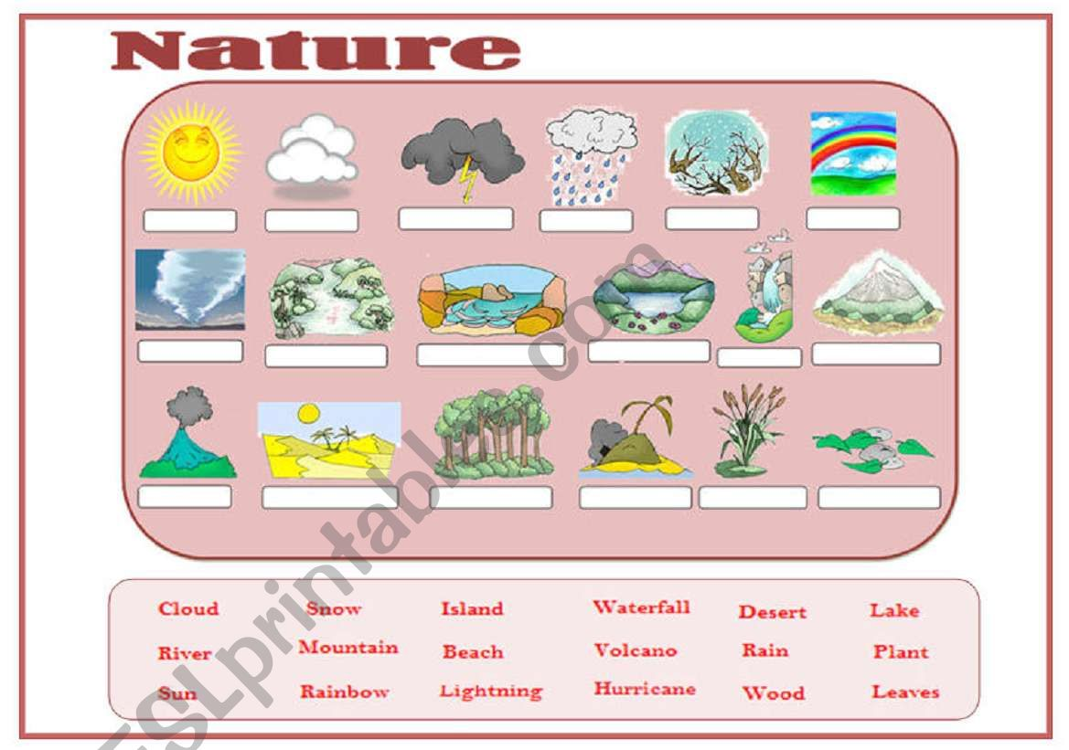 Nature Vocabulary