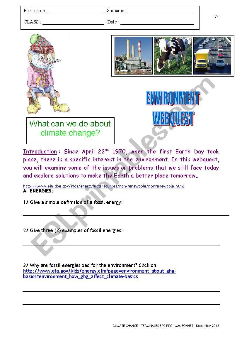 Environment Webquest