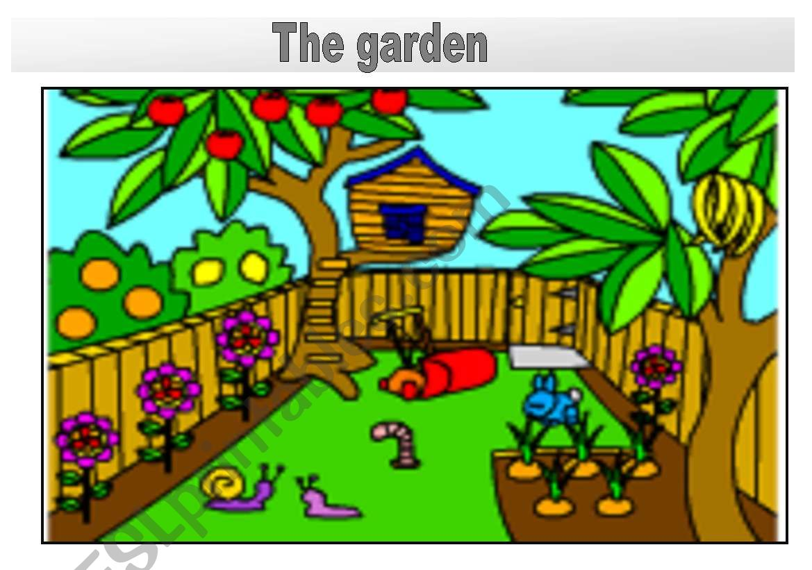 Rooms In The House Flashcards The Garden