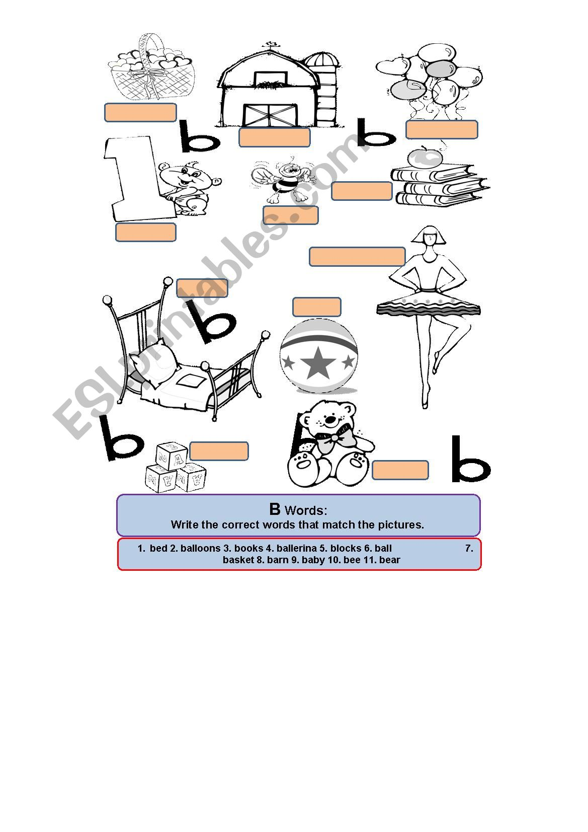 B Words Worksheet