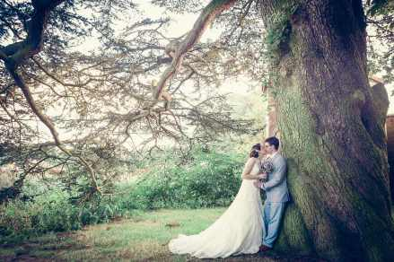 bride groom tree portrait somerford hall gardens natural romantic relaxed leamington Spa Photographer