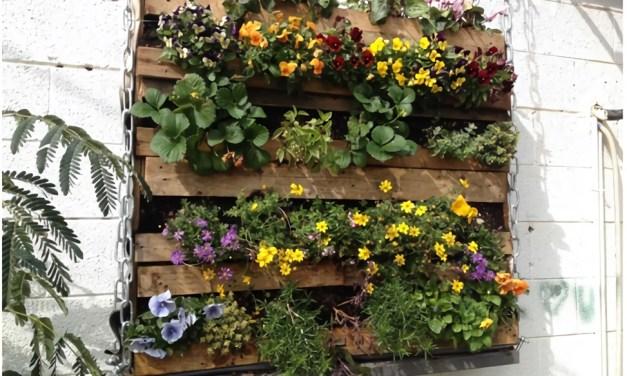Como crear espacios verdes para todos Decoideas