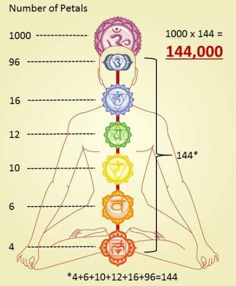 144000_petals-chakras