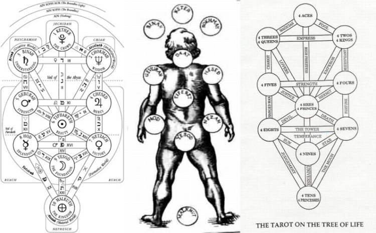 Tree_of_life_man