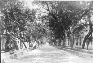 Calzada Fray Antonio de San Miguel