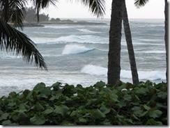 Hawaii 071