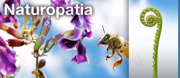 https://i2.wp.com/www.espiral108.net/wp-content/uploads/2011/03/16P_naturopatia.jpg