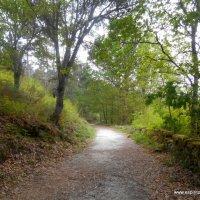 Trilho pedestre da Geira romana