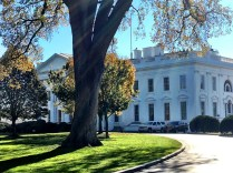 The Jump host Rachel Nichols captures the view approaching 1600 Pennsylvania Ave. (Photo courtesy of Rachel Nichols' Twitter feed)
