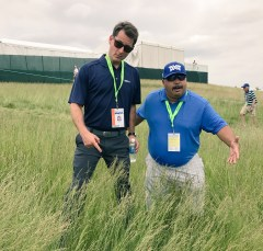 Matt Barrie (L) and ESPN.com senior golf analyst Michael Collins check out the very tall fescue rough at the U.S. Open. (Photo courtesy of Matt Barrie/ESPN)