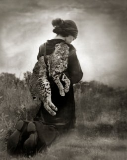 "Beth Moon, ""Journey of the Bobcat"", 2007-2011. Courtesy l'artista e PH Neutro"