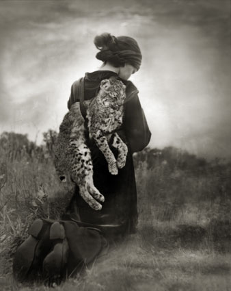 """Beth Moon, """"Journey of the Bobcat"""", 2007-2011. Courtesy l'artista e PH Neutro"""