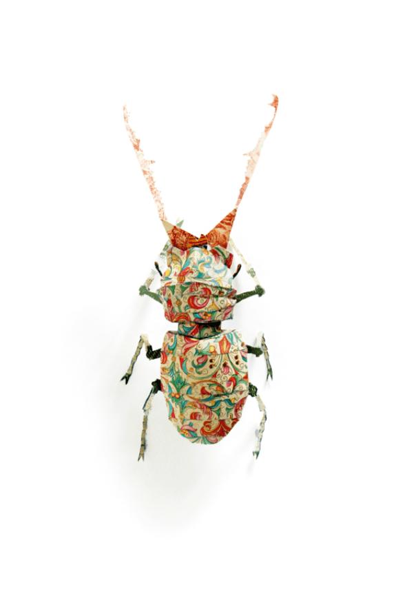 """Serena Piccinini, """"Cervo Tenaglia (Cervus Coleoptera)"""", 2012, particolare dell'installazione """"Il giardino della vita immobile"""", carta e materiali vari, dimensioni variabili"""