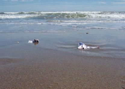 Ricardo Calero - Sea flooding, 2001-2011. Galeria Raquel Ponce