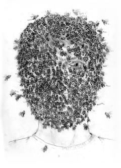 Michelangelo Setola, L'albero delle scimmie | fumetti e disegni