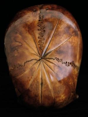CHARLEY CASE, Hommage à inconnu #3 (skull), 2009, ink on human skull © C. Case
