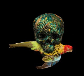 JAN FABRE, Skull, 2010, élythres beetles, polymers, stuffed bird, 28 x 23 x 19 cm, Photo: Pat Verbruggen © Angelos bvba
