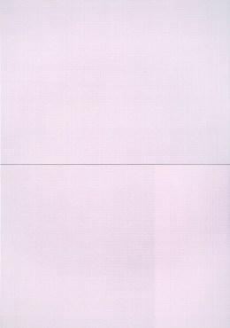 Tessitura n.29-30, 2013, tecnica mista su tela, 200x140 cm Foto Giulio Malfer