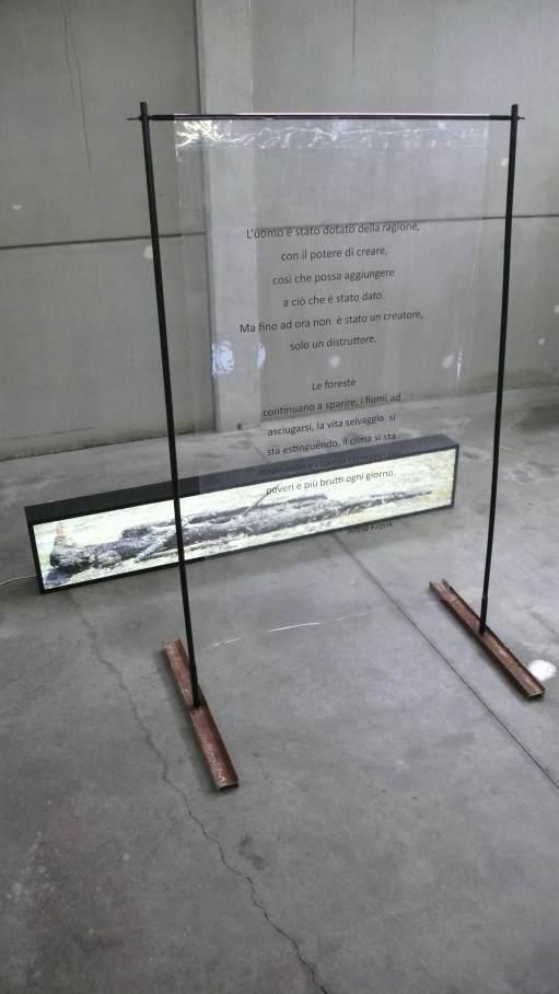 Valerio Saltarelli Savi, The Nature, installazione, light box e testo di Anna Frank, Cortile della Bivlioteca Comunale