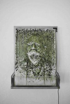 Massimiliano Pelletti, MOSS, 2013, acciaio, marmo, plexiglass, sistema idrico e muschio, 70x50 cm
