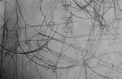 Tacita Dean, Still Life, 2009 film a colori in 16mm, muto, 5½ minuti, estratto da film, Courtesy l'artista, Frith Street Gallery, London e / and Marian Goodman Gallery, New York / Paris