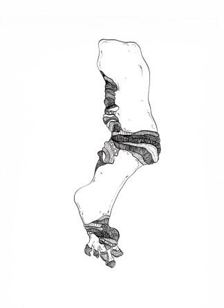 Andrea Guerzoni, FRAM01, 2014, china su carta, cm 42x29,5