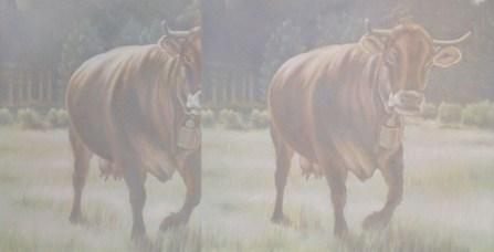 L'orMa, cows, 100x195cm
