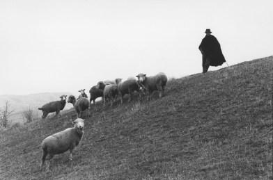 """Francesco Radino. Dalla serie """"Lucania"""", San Fele, 1981"""