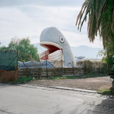 Quattro, TerraProject Photographers, Vulcano Vesuvio, novembre 2008. Una balena gonfabile in un parco di divertimenti per bambini.