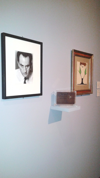 Veduta mostra Man Ray, Villa Manin