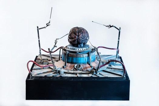 Marco Bolognesi, Big Brain, collage, toys, plastic, cm 30x30x20 h, 2014