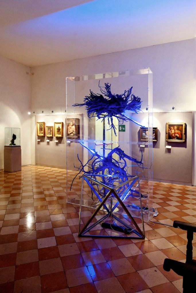 """Carlo dell'Amico, """"Corpi"""", 2009, radici, resine, teche in plexiglas, Pinacoteca Stuard - PR, mostra """"Caratteri"""" (foto di G. Amoretti)"""
